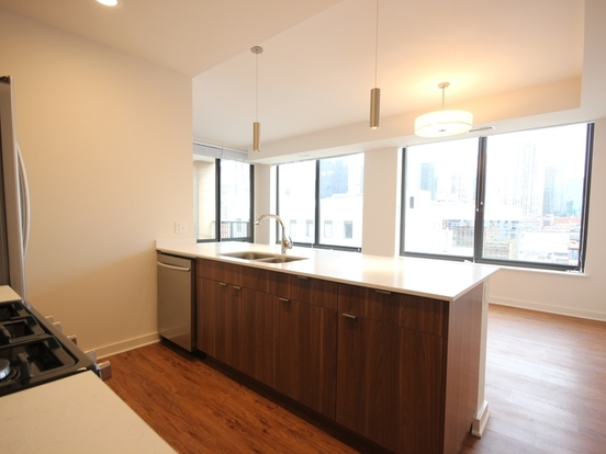 3 Bedrooms 3 Bathrooms Apartment for rent at 707 North Wells Street in Chicago, IL