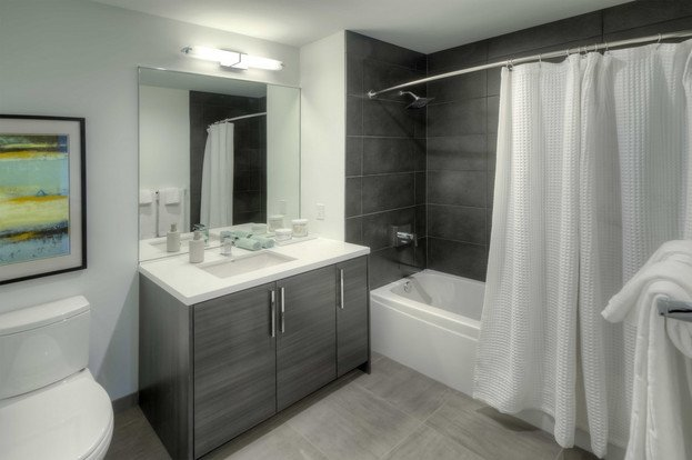 Studio 1 Bathroom Apartment for rent at Xavier in Chicago, IL