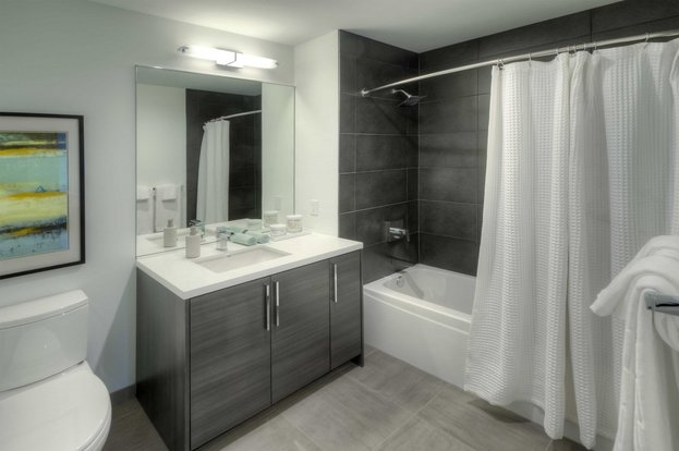 1 Bedroom 1 Bathroom Apartment for rent at Xavier in Chicago, IL