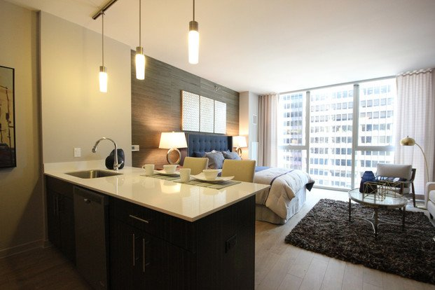 Studio 1 Bathroom Apartment for rent at 850 South Clark Street in Chicago, IL