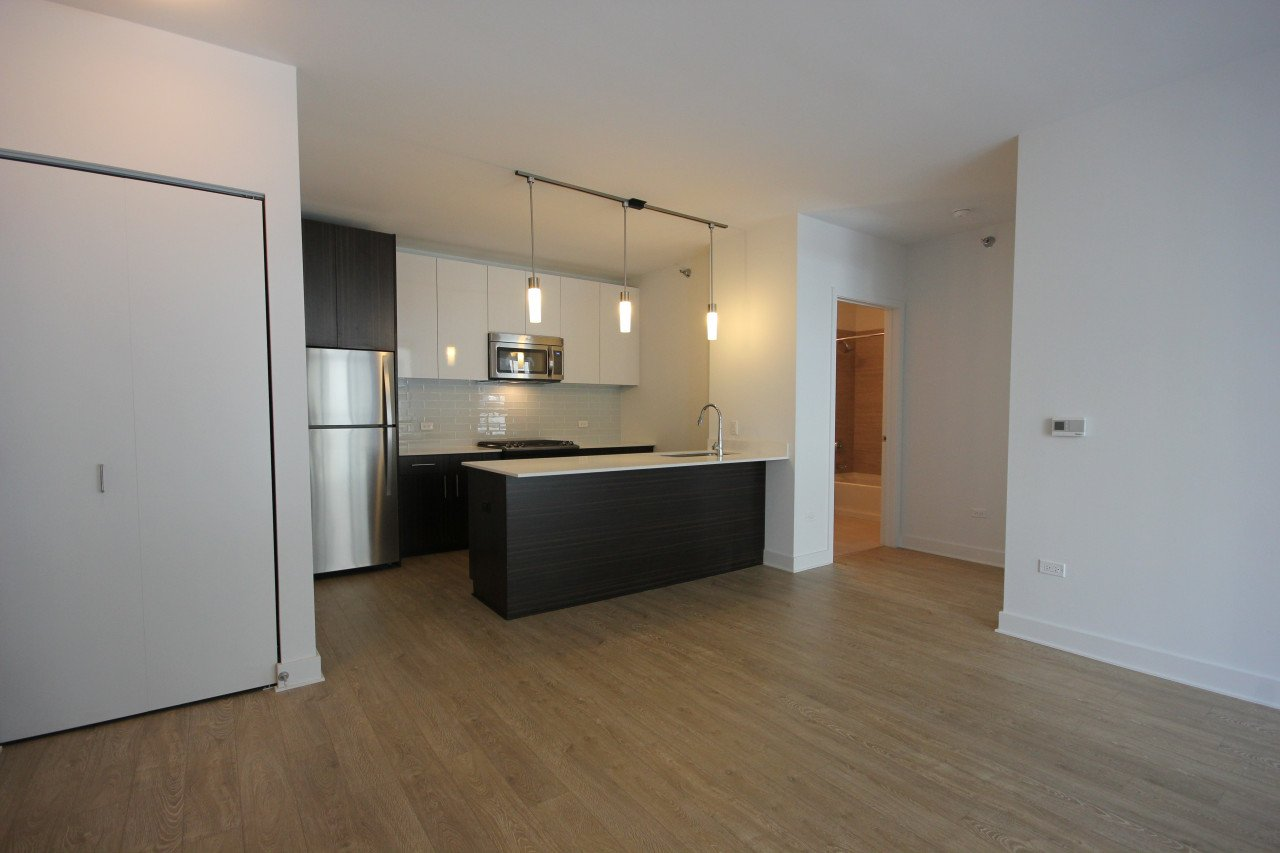1 Bedroom 1 Bathroom Apartment for rent at 850 South Clark Street in Chicago, IL