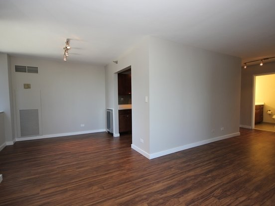 2 Bedrooms 2 Bathrooms Apartment for rent at 420 East Ohio in Chicago, IL