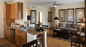 Similar Apartment at 8775 Amberglen Blvd