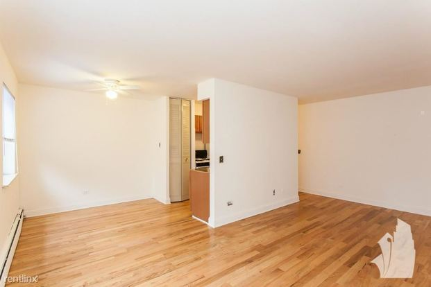 1 Bedroom 1 Bathroom Apartment for rent at 510 W Briar Pl in Chicago, IL
