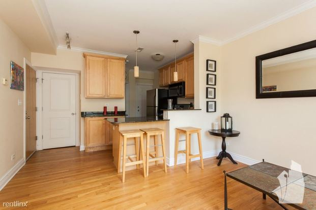 1 Bedroom 1 Bathroom Apartment for rent at 560 W Deming Pl in Chicago, IL
