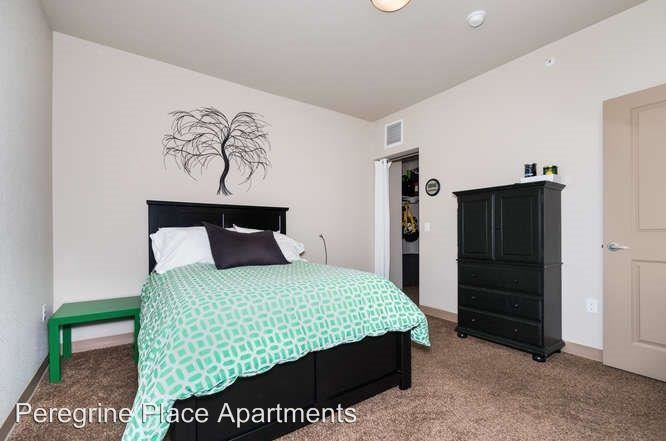 1 Bedroom 1 Bathroom Apartment for rent at Peregrine Place Apartments in Denver, CO