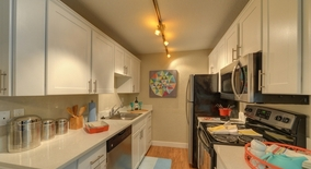 Se 6th St Apartment for rent in Bellevue, WA