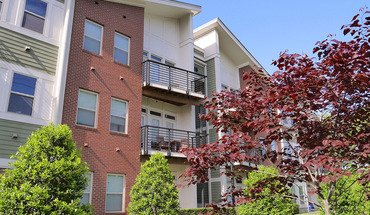 The Vyne On Central Apartment for rent in Charlotte, NC