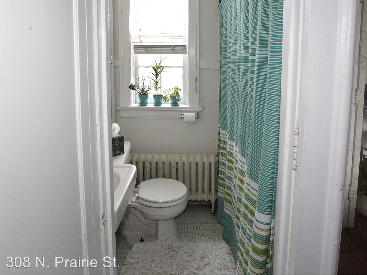 Studio 1 Bathroom Apartment for rent at 308 N. Prairie St. in Champaign, IL