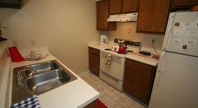 Similar Apartment at Burnet Rd. / 183