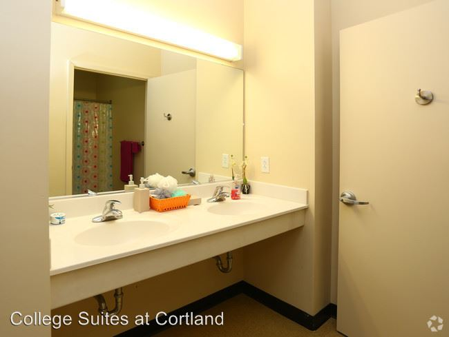 Studio 2 Bathrooms House for rent at 951 Route 13 in Cortland, NY