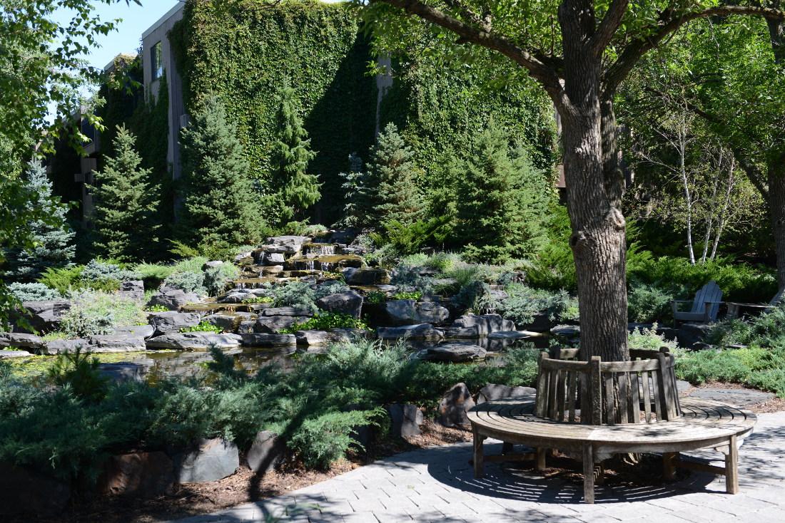 Cedars of Edina