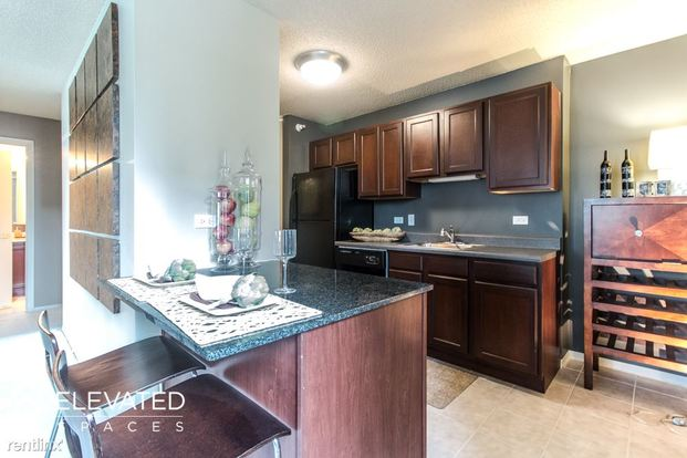 2 Bedrooms 2 Bathrooms Apartment for rent at South Water & Westshore in Chicago, IL