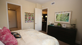 Similar Apartment at 214 Barton Springs Roa