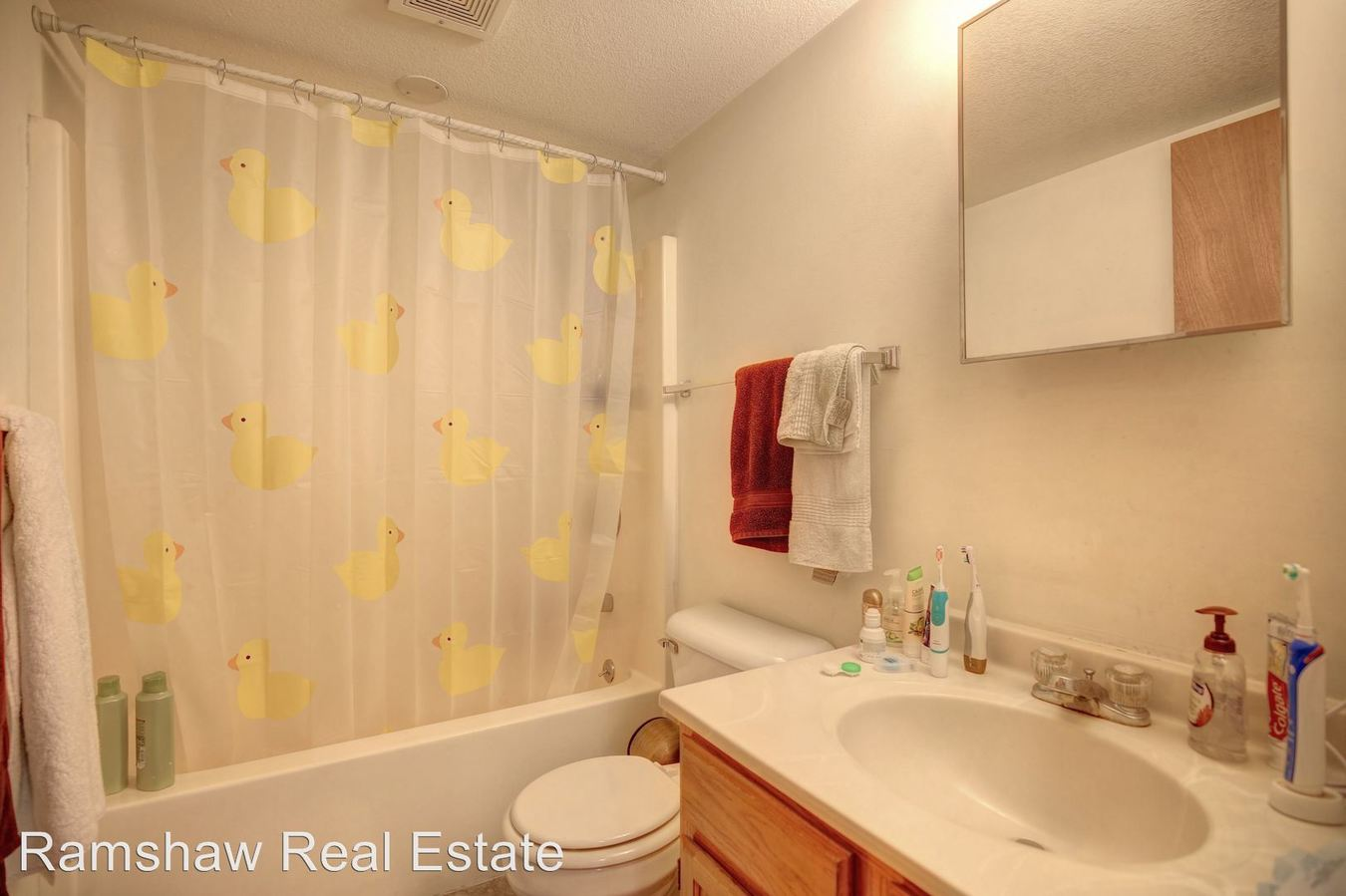 1 Bedroom 1 Bathroom Apartment for rent at Castle On Locust in Champaign, IL