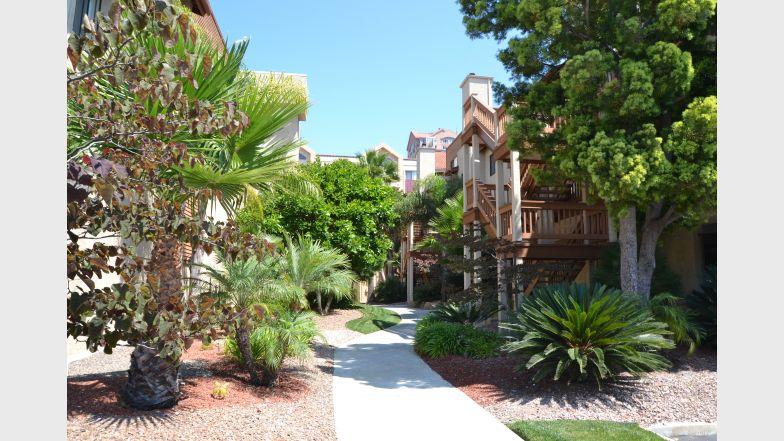 La Jolla International Gardens, San Diego - (see pics & AVAIL)