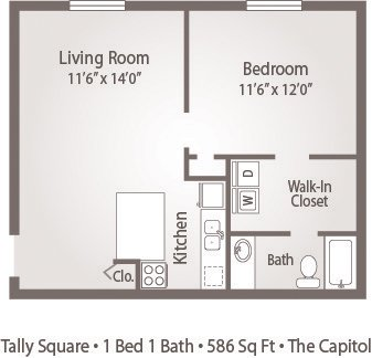 1 Bedroom 1 Bathroom Apartment for rent at Tally Square Apartments in Tallahassee, FL