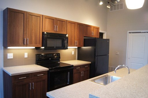 1 Bedroom 1 Bathroom Apartment for rent at 930 E CARSON ST BLDG B UNIT 407 in Pittsburgh, PA