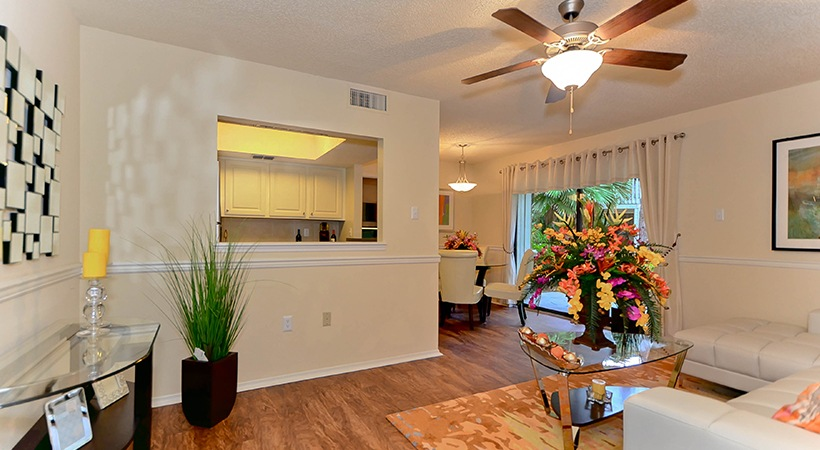 46 Apartments In Clearwater Fl Avail Now