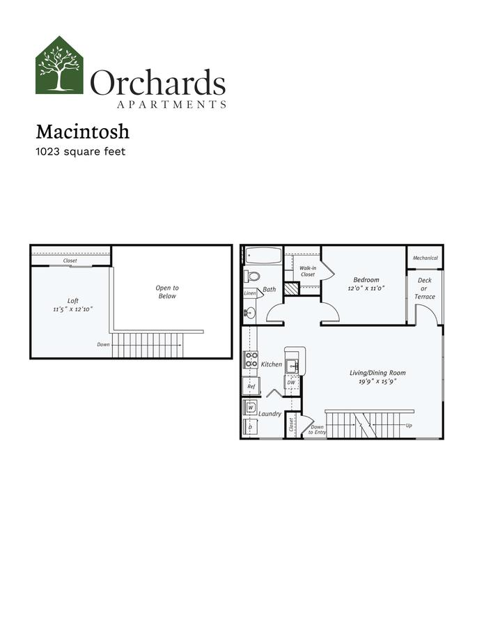 1 Bedroom 1 Bathroom Apartment for rent at Orchards Apartments in Marlboro, MA