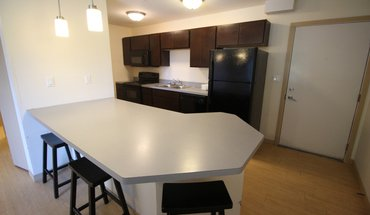 1106 S Euclid Apartment for rent in Champaign, IL