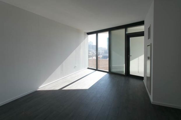 3 Bedrooms 2 Bathrooms Apartment for rent at City Hyde Park in Chicago, IL