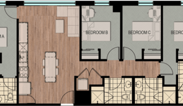 4 Bedroom Spa Apartment At The Hub Madison For Sublet Apartment for rent in Madison, WI